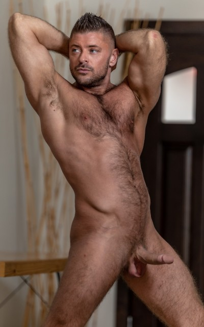 Jack Andy - Icon Male