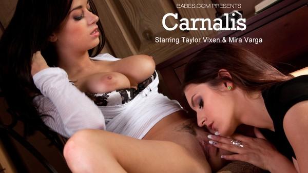 Carnalis - Taylor Vixen, Mira Sunset - Babes