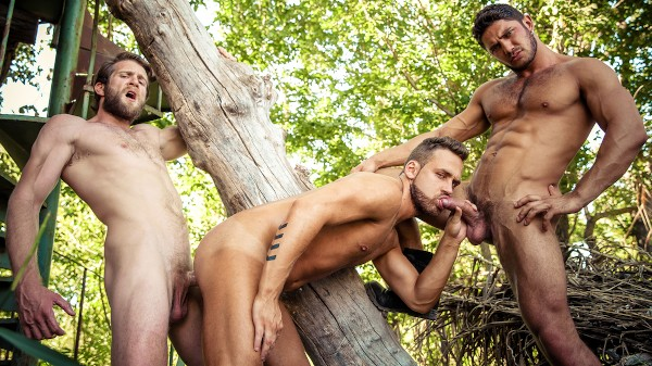 Watch Howl Part 3 on Male Access - All the Best Gay Porn in One place