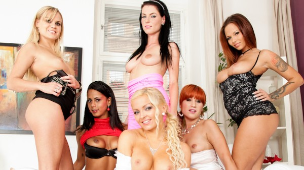 Lesbian Oil Orgy #03 Scene 1 Porn DVD on Mile High Media with Dominno Rebelde, Eileen Sue, Barra Brass, Isabella Chrystin, Jenna Lovely