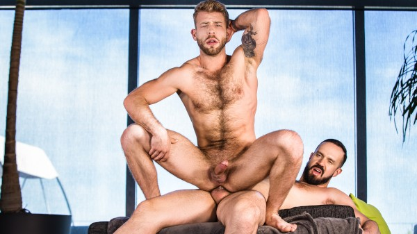 Watch Social Climber Part 1 on Male Access - All the Best Gay Porn in One place