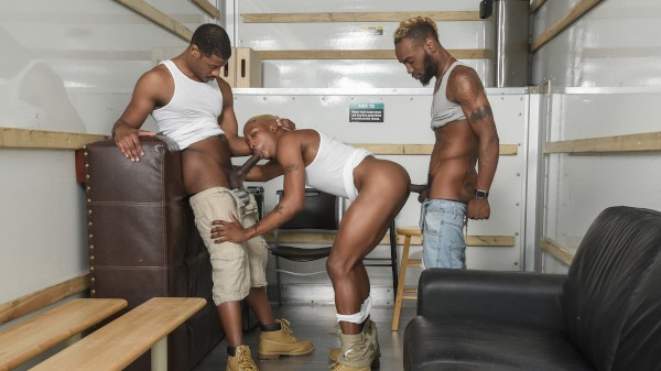 Watch 3 Horny Movers on Male Access - All the Best Gay Porn in One place