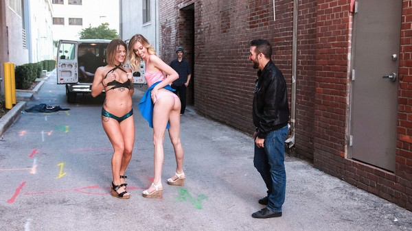 Daring Dames Haley Reed Porn Video - Reality Kings